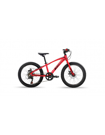 "BH EXPERT JUNIOR 20"" DISC"