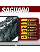 Vittoria Saguaro 29